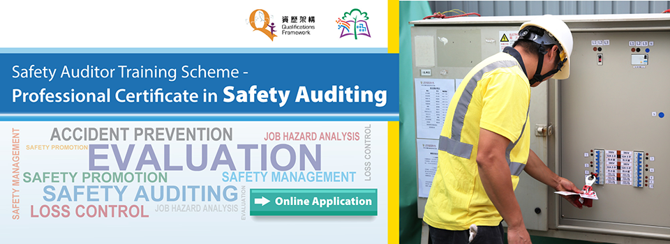Professional Certificate in Safety Auditing